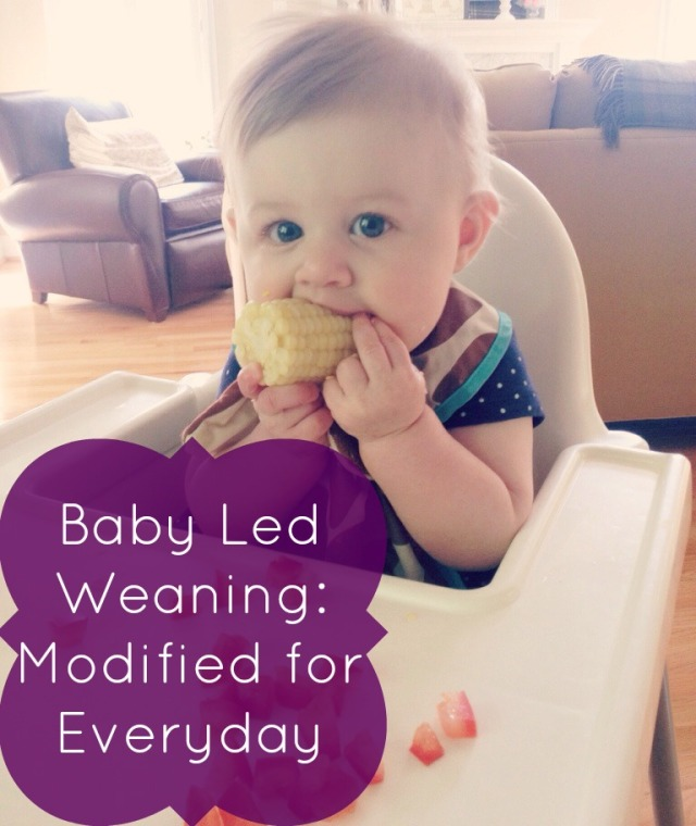Baby Led Weaning Modified for Everyday | Cup of Tea