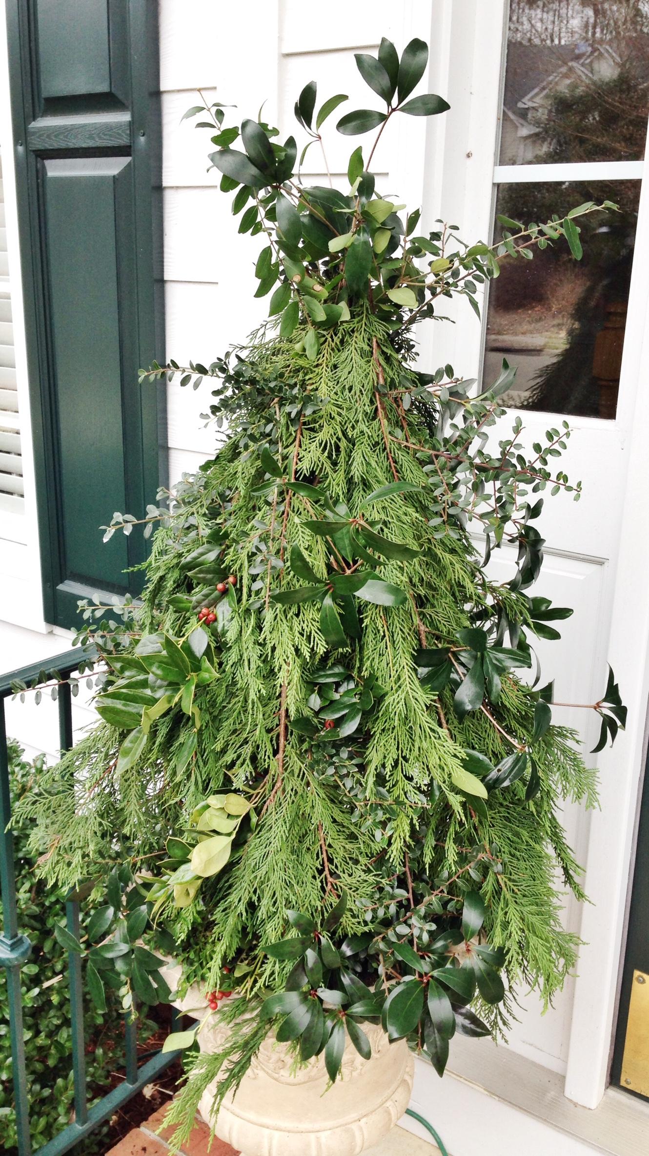 Tomato Cage Christmas Tree.Diy Tomato Cage Christmas Tree Cup Of Tea